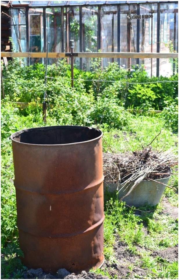 Выращивание клубники в бочке отзывы 34